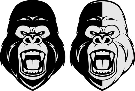 gorilla: Vector illustration, head evil ferocious gorilla shouts