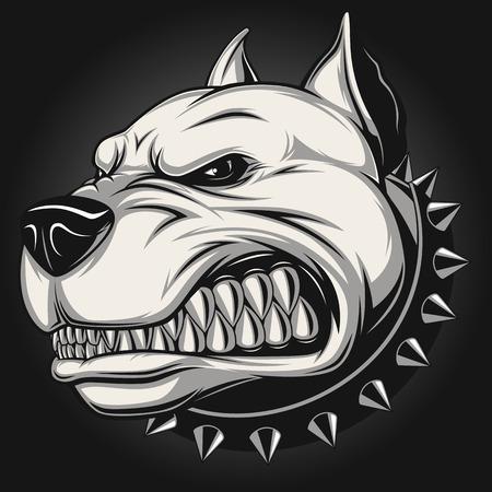 collarin: Ilustraci�n vectorial cabeza de la mascota pitbull enojado, sobre un fondo blanco
