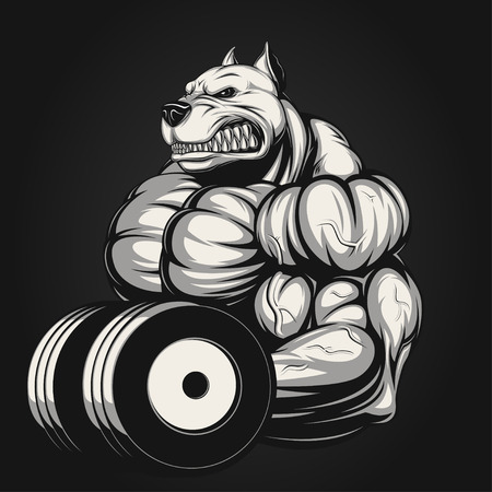 Vector illustration, strong dog doing exercise with dumbbells for biceps Illustration
