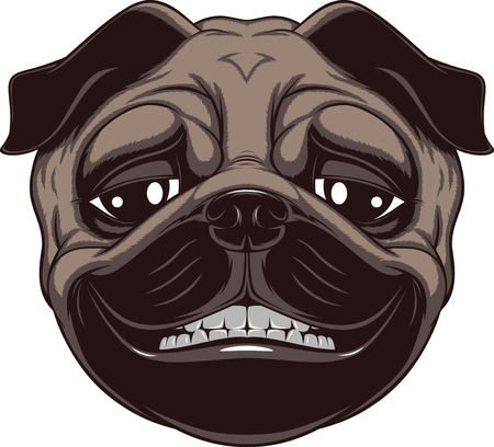 pure breed: Vector illustration of funny pug smiling on a white background