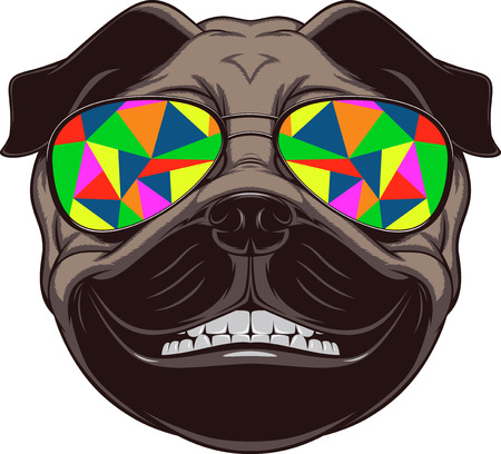 Vector illustration of funny pug smiling on a white background