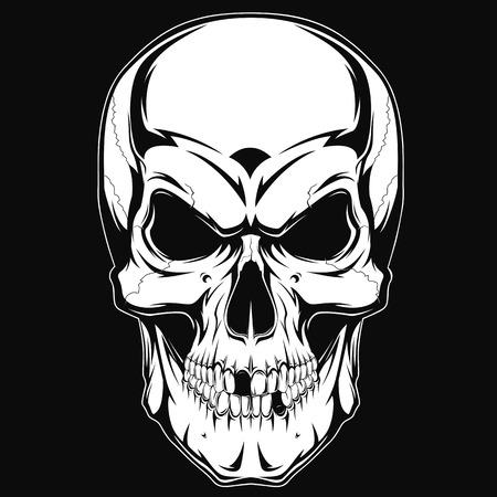Schwarz-Weiß-menschlicher Schädel mit einem Unterkiefer.