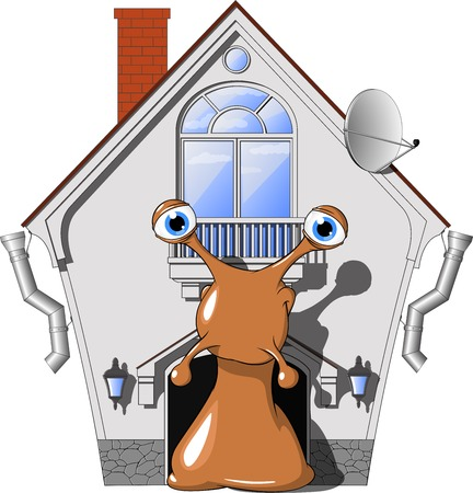 close up eye: illustration snail in a cozy house, on a white background