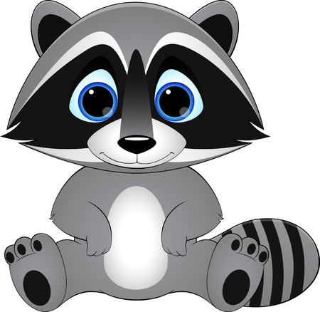 cute raccoon on white background, illustration