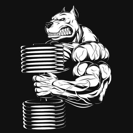 Vector illustration, strong dog doing exercise with dumbbells for biceps Vettoriali