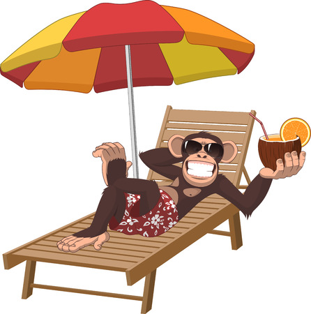 Vector illustration, monkey lying on a deck chair and drinking a cocktail