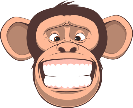 grin: Vector illustration, funny chimpanzee smiling, on a white background Illustration
