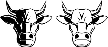 Vectorial illustration, healthy ferocious bull on a white background
