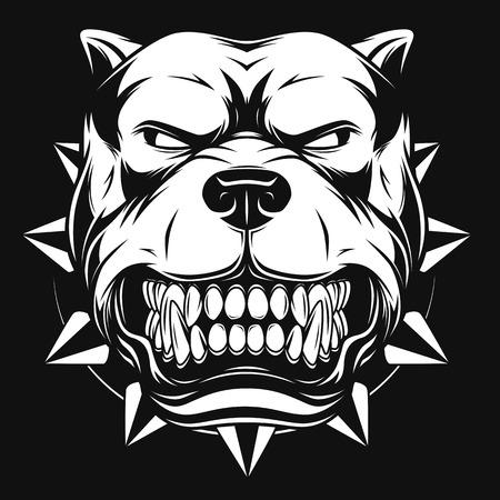 perro furioso: Ilustración vectorial cabeza de la mascota pitbull enojado, sobre un fondo blanco