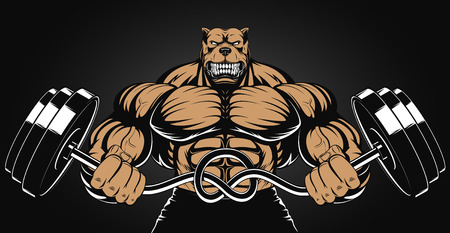 steroids: Vector illustration of an angry dog with a barbell