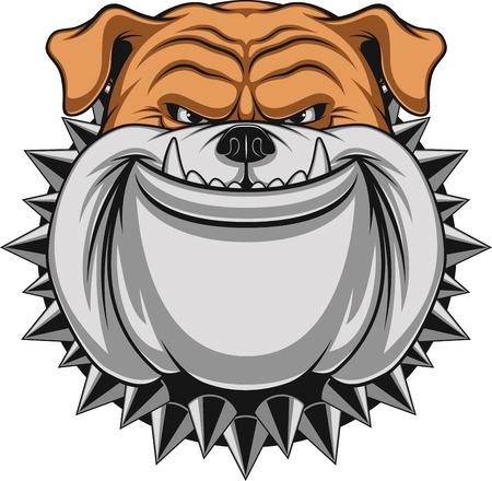 Ilustración vectorial cabeza de la mascota bulldog enojado, sobre un fondo blanco Foto de archivo - 42087820