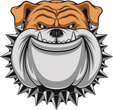 Vector illustration Angry bulldog mascot head, on a white background Illusztráció