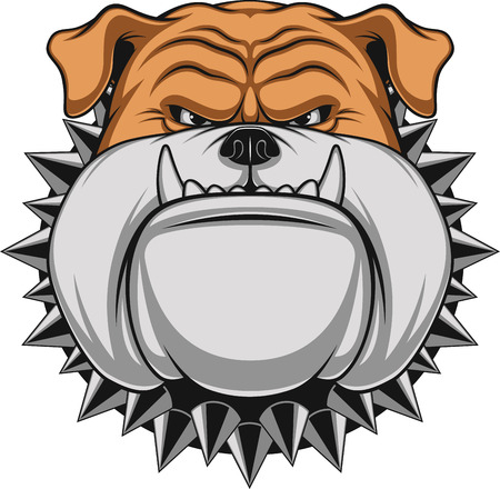 perro furioso: Ilustración vectorial cabeza de la mascota bulldog enojado, sobre un fondo blanco