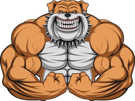 Vector illustratie van een sterke bulldog met grote biceps