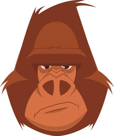 devious: Vector illustration, head funny good gorilla, smiling