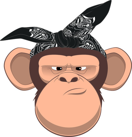 stare: Vector illustration, funny monkey in bandana on white background Illustration