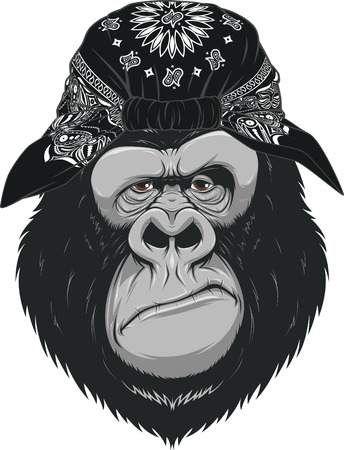 Vector illustration, head funny good gorilla, smiling