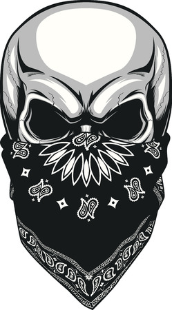 hand drawn cartoon: Vector illustration, skull bandana on a white background