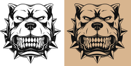 ferocious: Vector illustration Angry pitbull mascot head, outline