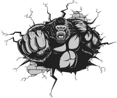 Vector illustration, ferocious gorilla hit the wall with his fist Illustration
