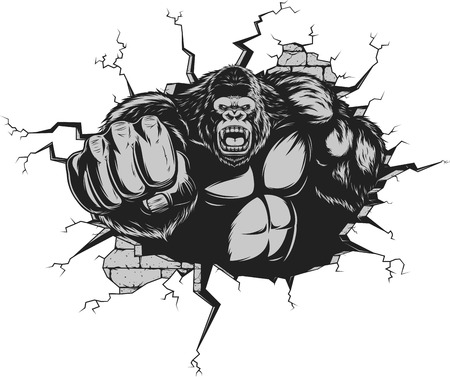 Vector illustration, ferocious gorilla hit the wall with his fist Çizim