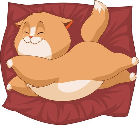 baby illustration: Vector illustration of a cute fluffy kitten sleeping on a pillow Illustration