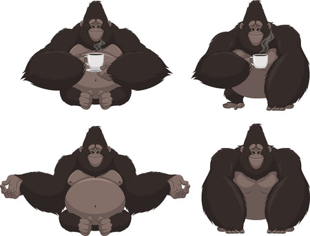 chimpances: Ilustración vectorial conjunto de gorila divertido sobre un fondo blanco Vectores