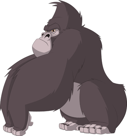 devious: Vector illustration, severe gorilla sits and frowns on a white background