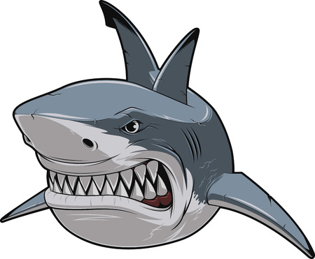 predators: Vector illustration, toothy smiling white shark swims