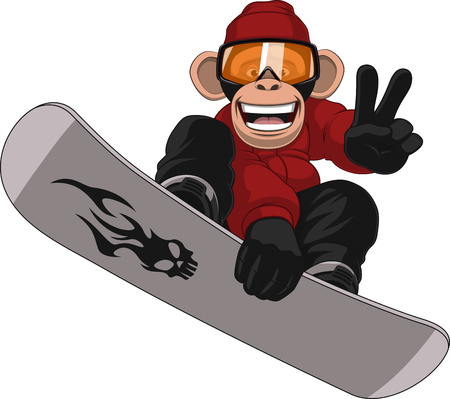 Vector illustration, funny chimpanzee snowboarder on a white background