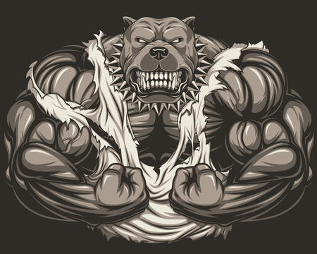triceps: Vector illustration of a strong  pitbull with big biceps, bodybuilder