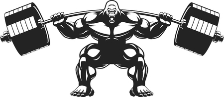 muscular men: Vector illustration of an angry gorilla with a barbell Illustration
