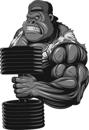animal cartoons: Vector illustration, terrible gorilla professional athlete, on a white background Illustration