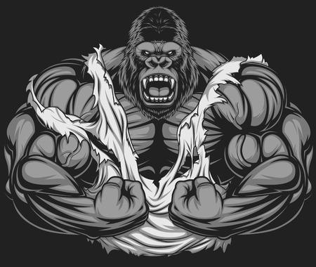 musculoso: Ilustración del vector, culturista gorila feroz muestra sus grandes bíceps