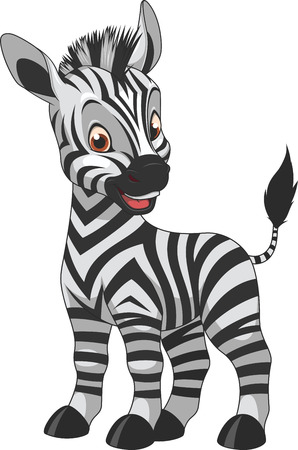 zebra pattern: vector illustration of a baby zebra, on a white background