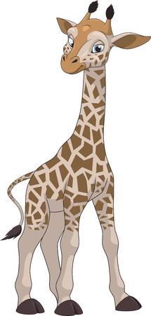 Vector illustration, funny little giraffe on a white background Vektorové ilustrace