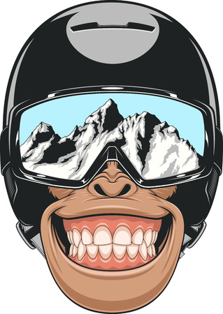 Vector illustration of a chimpanzee wearing a helmet for snowboarding