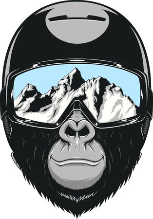 Vector illustratie van een gorilla in een helm voor snowboarden