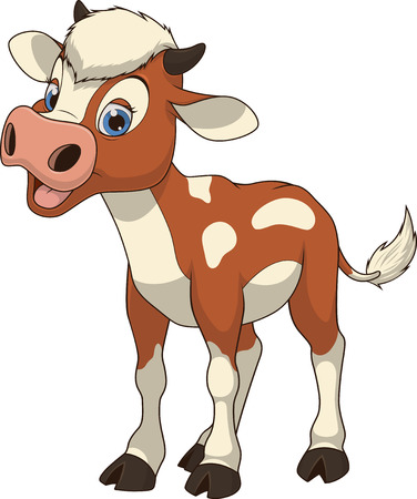 cow vector: Vector illustration, funny baby cow, on a white background.