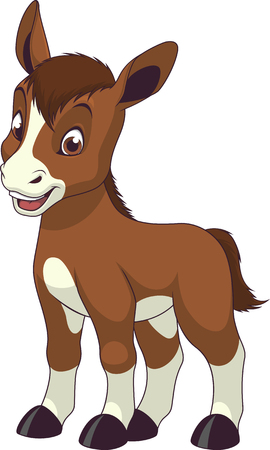 Vector illustration, baby funny foal, on a white background.