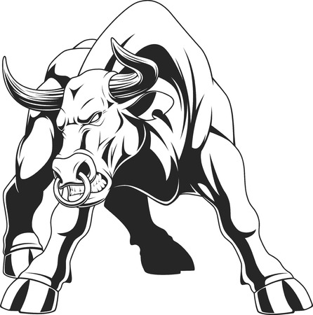 Vector illustration, of a ferocious bull, on a white backgroun, sketch