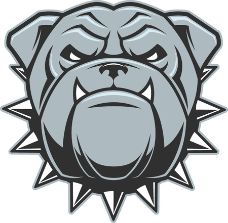 Vector illustration head ferocious bulldog mascot, on a white background