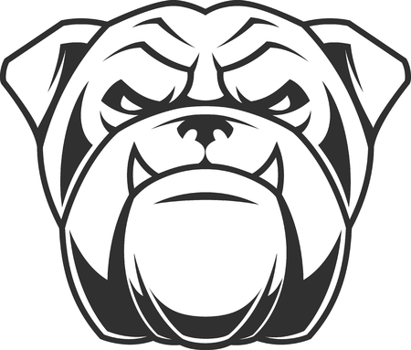 brutal: Vector illustration head ferocious bulldog mascot, on a white background