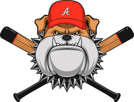 Vector illustration, a fierce bulldog wearing baseball cap, against a white background