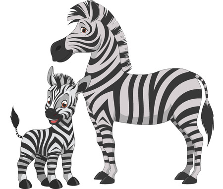 Ilustración vectorial, cebra adulto y joven cebra, sobre un fondo blanco Foto de archivo - 55751196