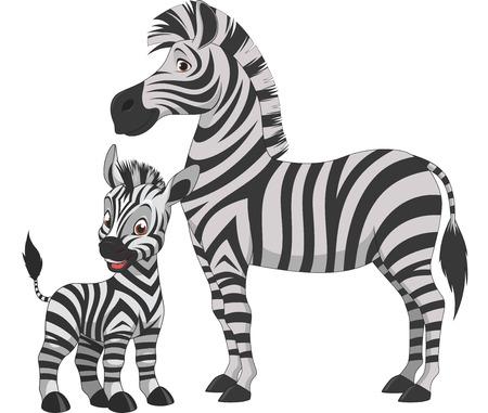 Vector illustratie, volwassen zebra's en jonge zebra, op een witte achtergrond Stock Illustratie