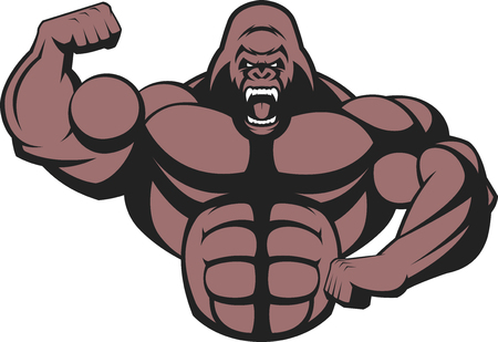 bodybuilding: illustration of a strong gorilla, with big biceps. Illustration