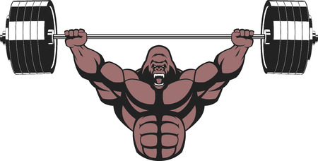 illustration, strong ferocious gorilla performs an exercise with a barbell over his head Vectores