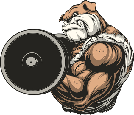illustration of a strong athlete dog bulldog performs an exercise with a barbell biceps