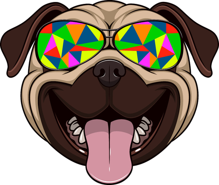 pug: Vector illustration of funny pug smiling stylish sunglasses